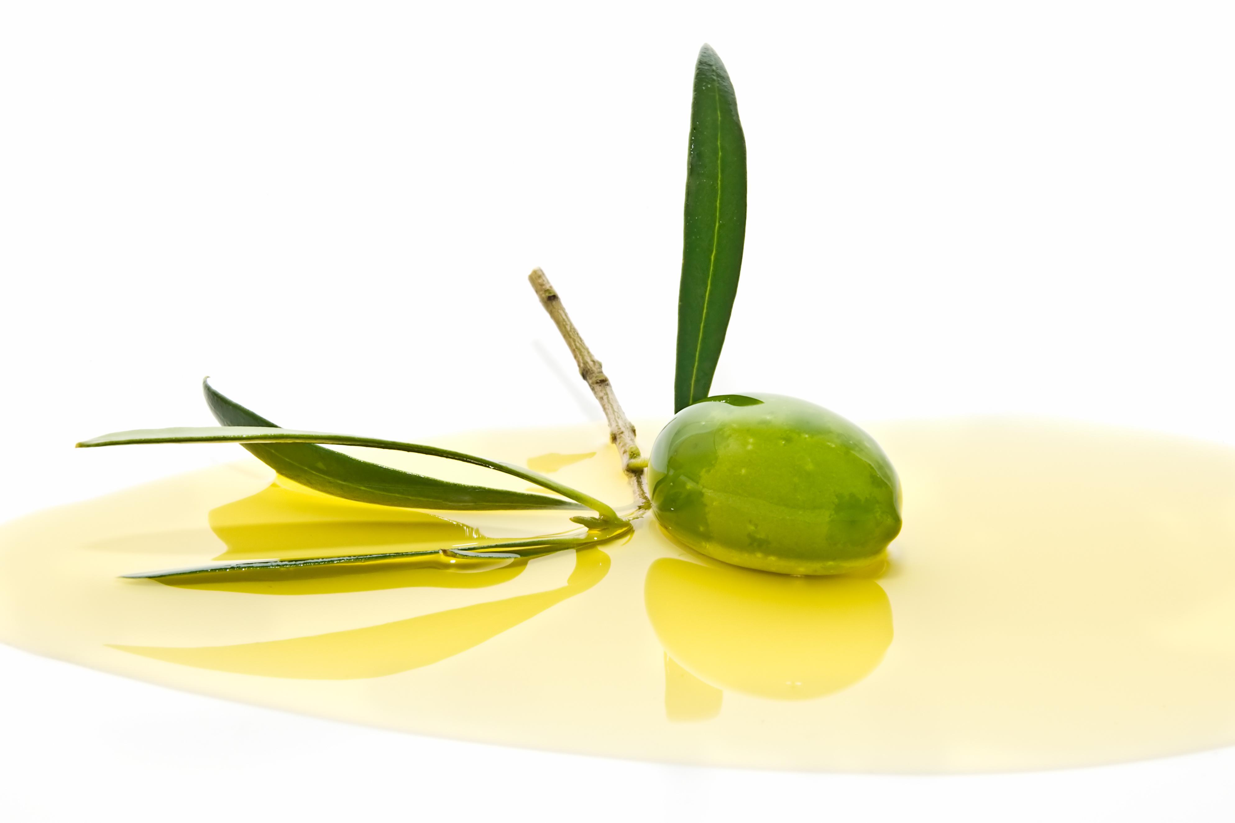 Foto Olio e oliva